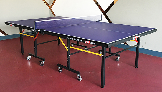 DHS Table Tennis Tables and Relevant Features