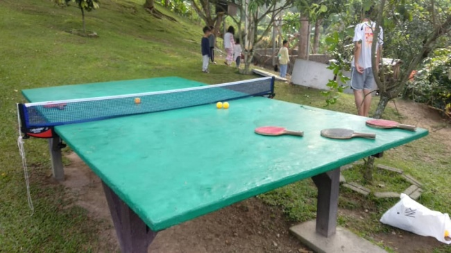 DIY cement ping pong table